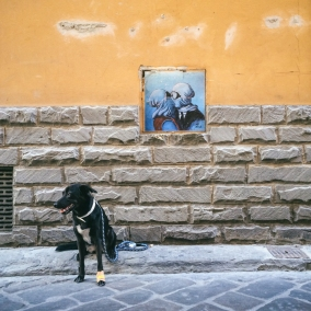 "Aria and street art by Blub, whose work popped up around Florence circa January 2014. This project is known as ""L'arte sa nuotare,"" or ""Art Knows How to Swim."" See more of Blub's work on Instagram: @lartesanuotare. (Aria wears a bandage on her foot because she cut it on some broken glass while playing at a park in Rome. I'm happy to say she made a full recovery.)"
